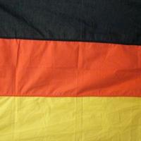 Banderas_05